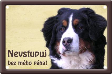 Plechové psí cedule - Bernský salašnický pes